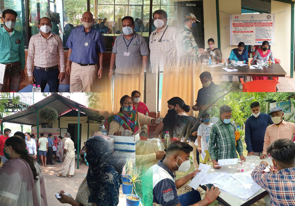 Vaccination Camp Held At Diplast Farm