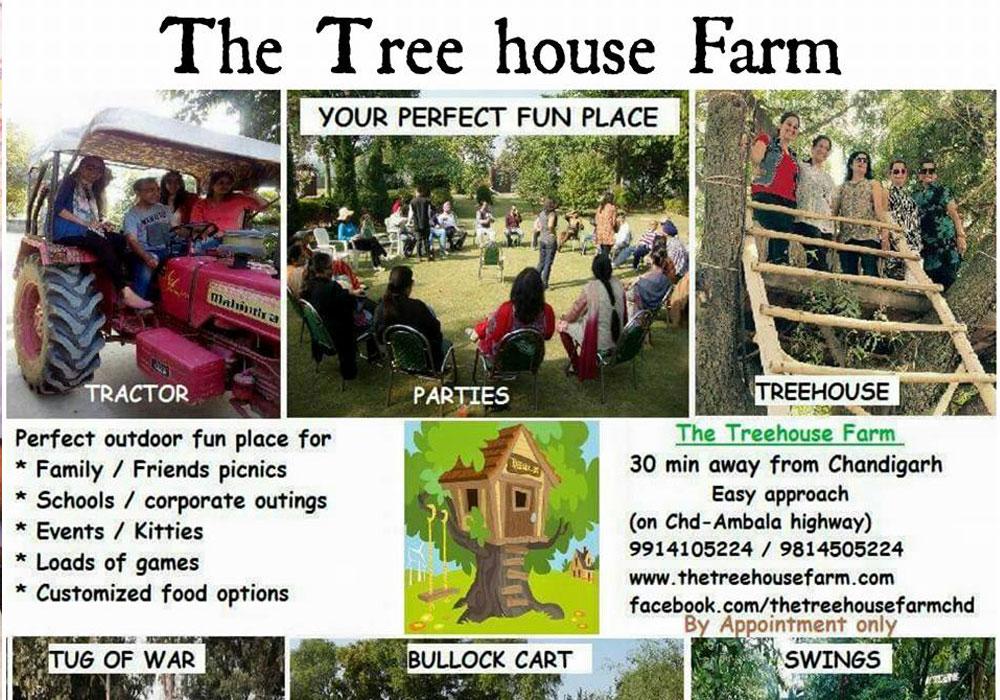 The Tree House Farm